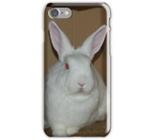 Bart in his box - aka Demon Bunny iPhone Case/Skin