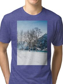 Trees By The Winter Lake Tri-blend T-Shirt