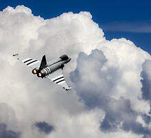 Typhoon Fighter  by J Biggadike