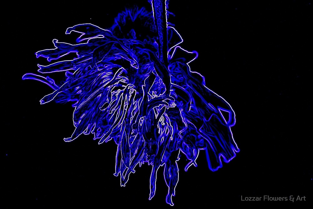 Fun in Blue and White Neon by Lozzar Flowers & Art
