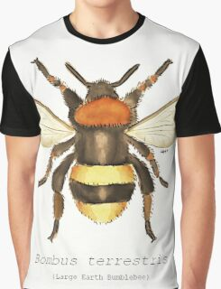 Bombus terrestris (Large Earth Bumblebee) Graphic T-Shirt