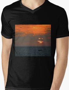 Picture Perfect Mens V-Neck T-Shirt