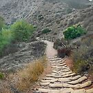 Sandbag Slope by Heather Friedman