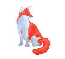 Cute Fox with Fluffy Tail Photographic Print