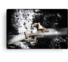 The Long Rifle  Canvas Print
