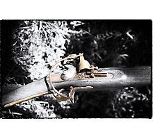 The Long Rifle  Photographic Print