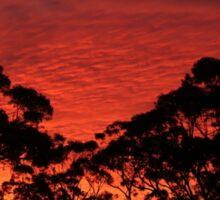 Stanwell Tops Sunset Sticker