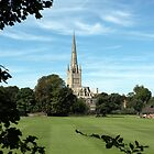 Norwich Cathedral, Norwich, Norfolk by Chris Monks