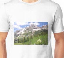 Elk Mountains Unisex T-Shirt