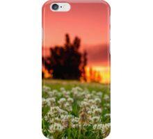 Sunset in my backyard  iPhone Case/Skin