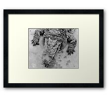 Crocodile show  Framed Print