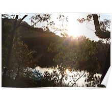 Sunset at Dunn's Swamp Poster