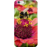 an expert knows where to find the good stuff iPhone Case/Skin