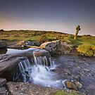 The Windy Post - Dartmoor by Angie Latham