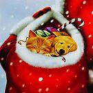 In Santa's Sack by Susan S. Kline