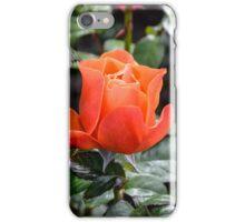 Rose Fellowship bud iPhone Case/Skin