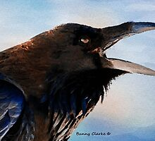Call of the Raven by Bunny Clarke