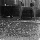 The reading chair in the rain by weecoughimages