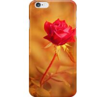 Once I Had A Secret Love iPhone Case/Skin