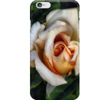 Peaches and Cream iPhone Case/Skin