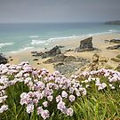 Cornwall - Bedruthan Steps by Angie Latham