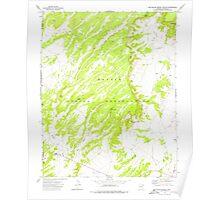 USGS TOPO Map Arizona AZ Big Willow Spring Canyon 314132 1972 24000 Poster