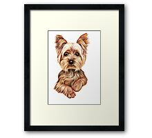 Meet Terry from Yorkshire Framed Print