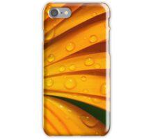 cicade op natte goudsbloem iPhone Case/Skin