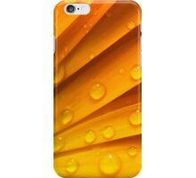 zomers kleuren in zomerse regen iPhone Case/Skin
