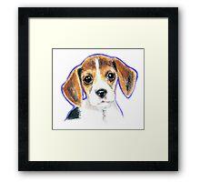 Cute Beagle Puppy Dog  Drawing Framed Print