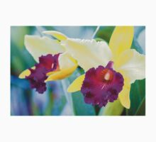 Close up shot on colorful Cattleya Orchids T-Shirt