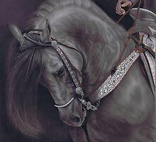 Spanish Horse by Karie-Ann Cooper by artbykarieann
