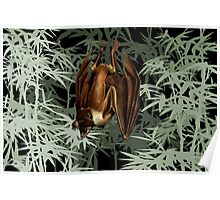 Flying Fox Bat in Bamboo Forest Poster