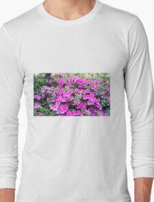 Pinks Long Sleeve T-Shirt