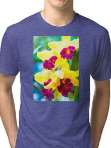 Close up shot on colorful Cattleya Orchids Tri-blend T-Shirt