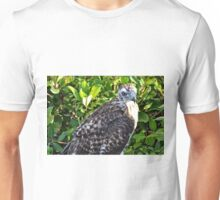 Young Hawk in the Wild in California Unisex T-Shirt