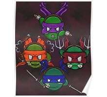 TMNT Kirby Poster