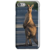 Meanwhile in Australia.... iPhone Case/Skin
