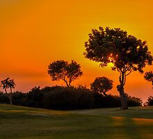 Sunset on the 9th fairway at Aphrodite Hills by brianhardy247