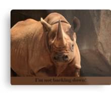I'm not backing down! Metal Print