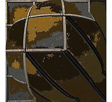 Caged Rust Photographic Print