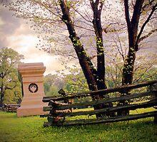 Shiloh Battlefield-048823 by Michael Byerley