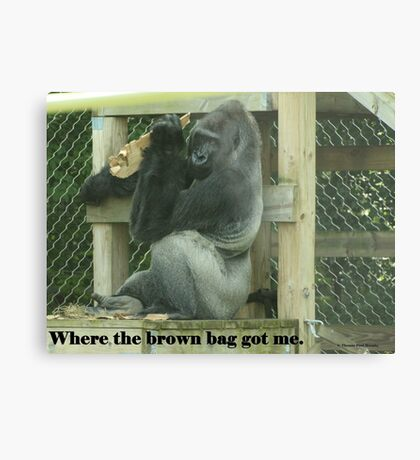 Where the brown bag got me. Metal Print