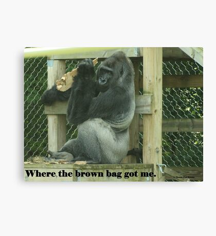 Where the brown bag got me. Canvas Print