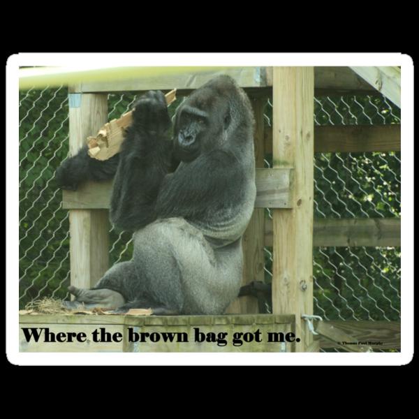 Where the brown bag got me. by Thomas Murphy