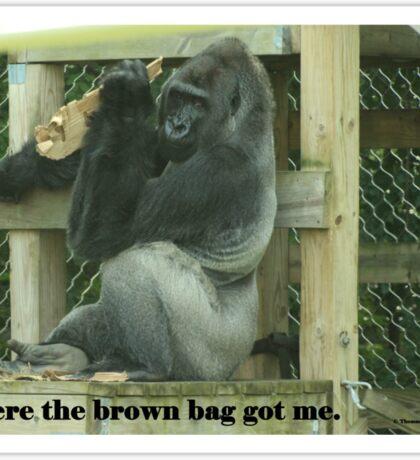 Where the brown bag got me. Sticker