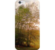 Shiloh Battlefield-0557449 iPhone Case/Skin