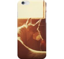 Flare iPhone Case/Skin