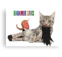 osama cat herambe  Canvas Print