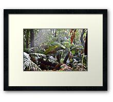 Wild Tasmania Framed Print